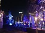christmas illumination.JPG